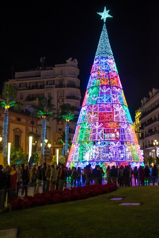 kerstboom-sevilla