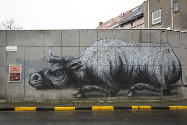 straatkunst-roa-gent3