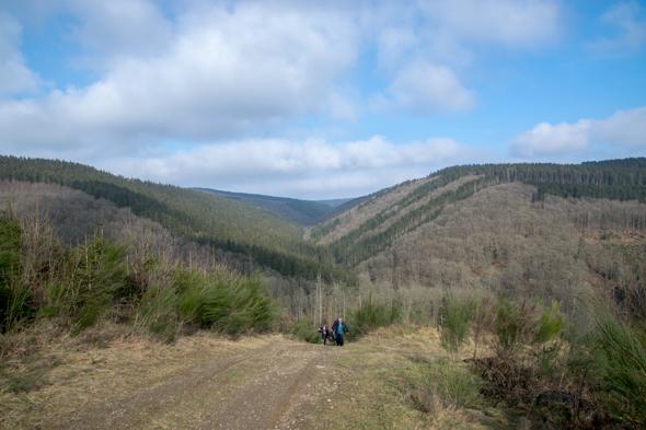 Schatzoeken in de Ardennen