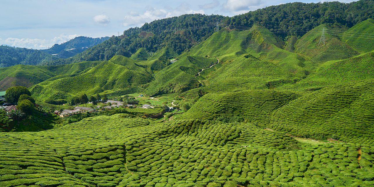 Toeristenbelasting Maleisië ingevoerd