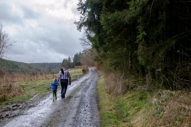 Winterwandelingen in de Ardennen