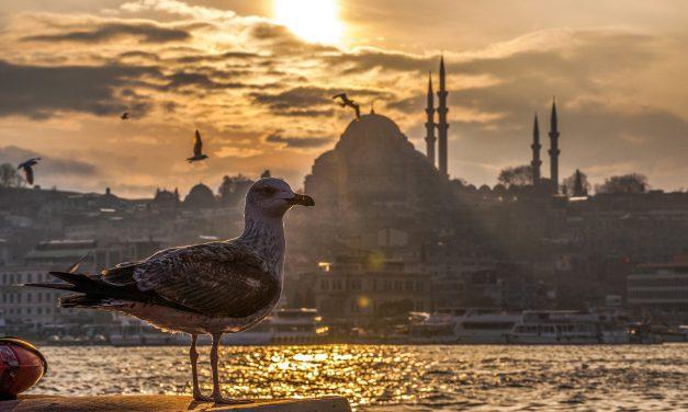 Toerist blijft Turkije trouw