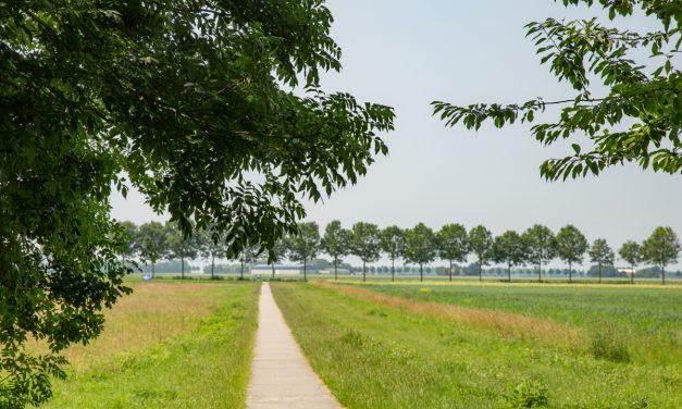 Nederlandse zomer mogelijk nog weken van slag